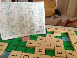 World Scrabble Championships 2013